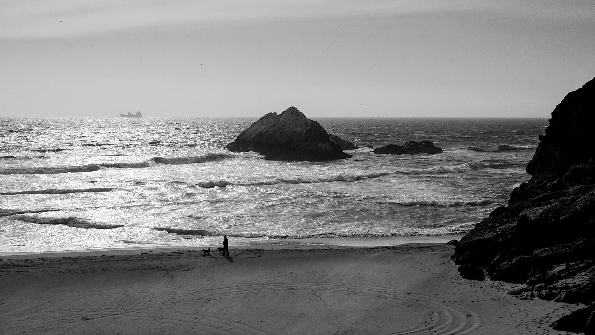 Photo of a San Francisco beach, with rocks, a person walking dogs, truck tracks, and waves and a container ship beyond.
